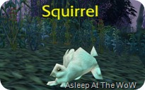Squabbit_043009_002226